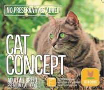 CAT-CONCEPT-ADULT-BREED