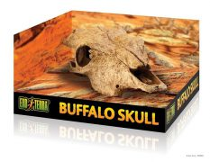 pt2857_buffalo_skull_packaging_1
